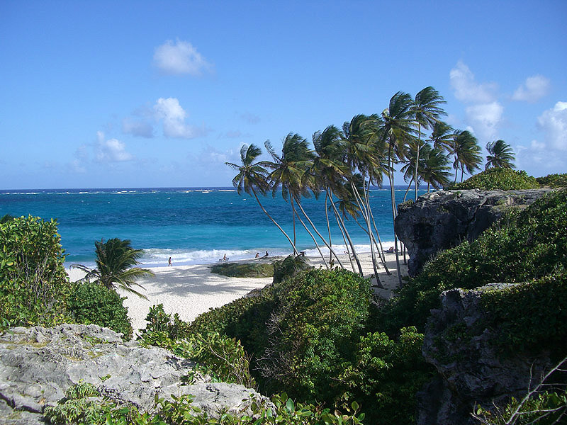 barbados revolt The history of barbados from amerindians to settlement, slavery and tourism.